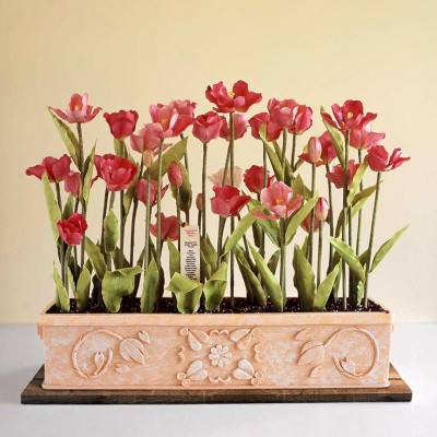 Tulips in Terra Cotta
